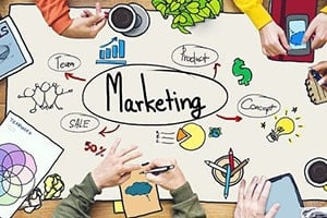 Marketing Material Translation