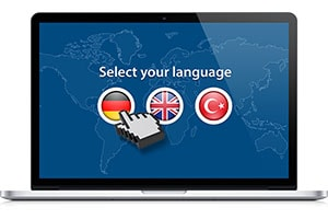 Web Translation & Localization